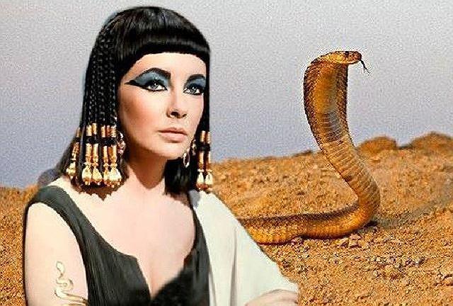 Bí ẩn về loài rắn của nữ hoàng Cleopatra Ảnh 1