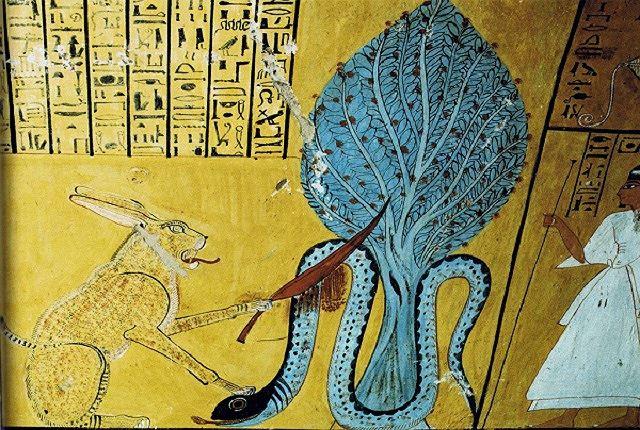 Bí ẩn về loài rắn của nữ hoàng Cleopatra Ảnh 4