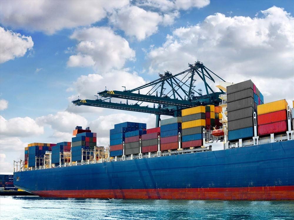 Sau bài báo Lao Động, Bộ NNPTNT gửi công văn hỏa tốc giải cứu doanh nghiệp thủy sản Ảnh 3