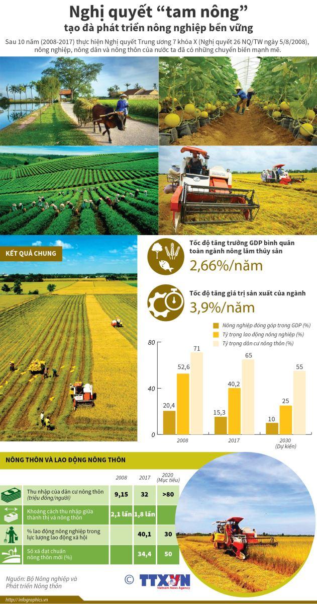 Nghị quyết 'tam nông' tạo đà phát triển nông nghiệp bền vững Ảnh 1