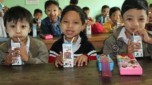 Khát khao ly sữa học đường Ảnh 2