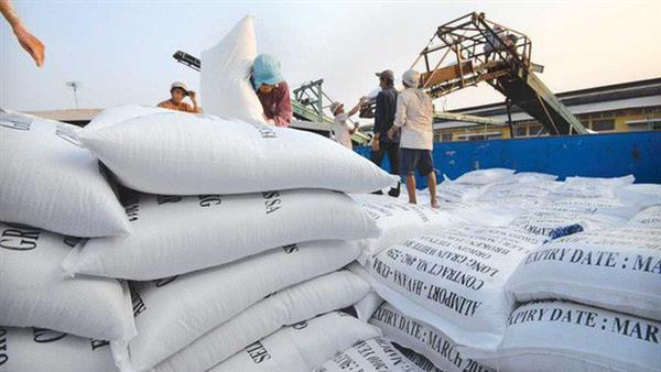 Xuất khẩu gạo sẽ cán đích trên 3,1 tỷ USD Ảnh 1