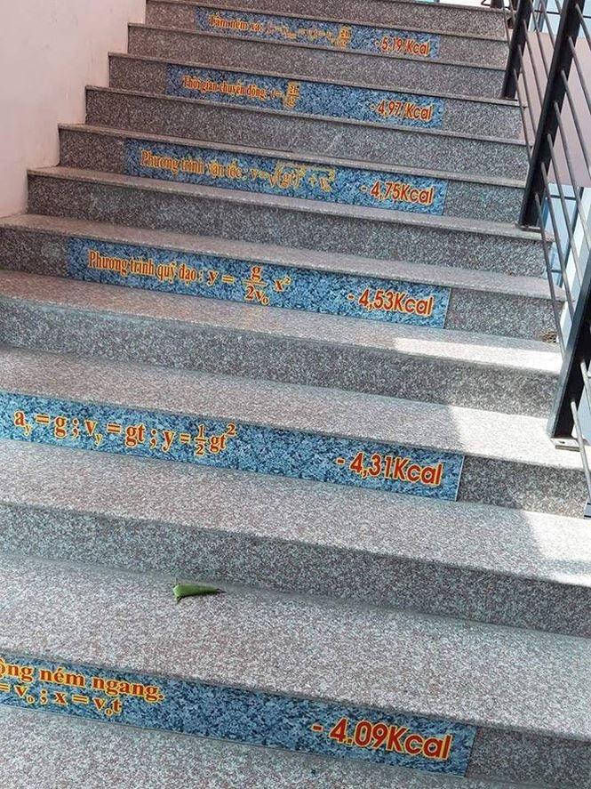 Những bậc cầu thang giúp học trò mang công thức Toán - Lý - Hóa 'in sâu vào tiềm thức' Ảnh 2