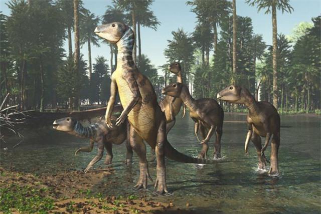 Khám phá ra loài khủng long mới tại Australia Ảnh 1