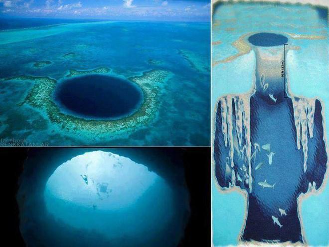Thám hiểm hố xanh khổng lồ Belize - vực sâu kỳ lạ dưới lòng đại dương Ảnh 2