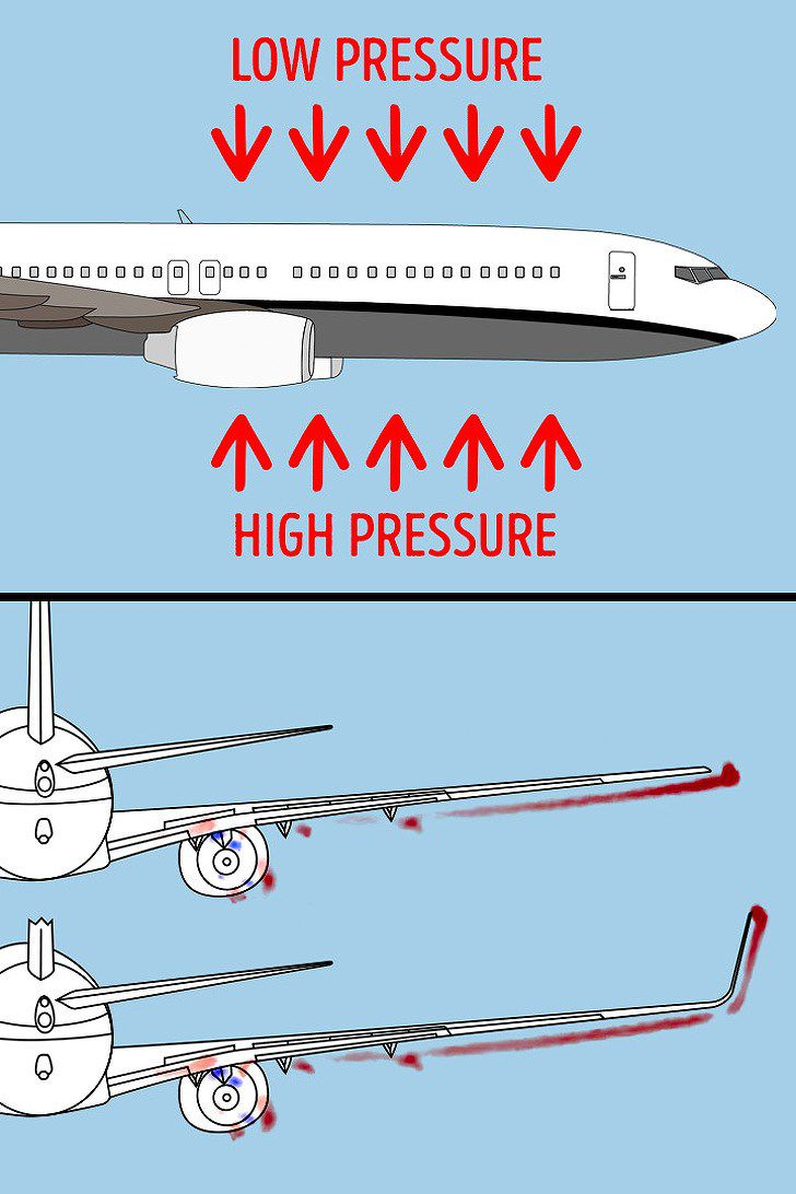 8 sự thật về hàng không có thể bạn chưa biết Ảnh 2