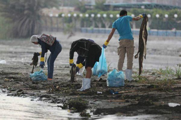 Giới trẻ Ai Cập lội bùn để dọn sạch sông Nile Ảnh 1