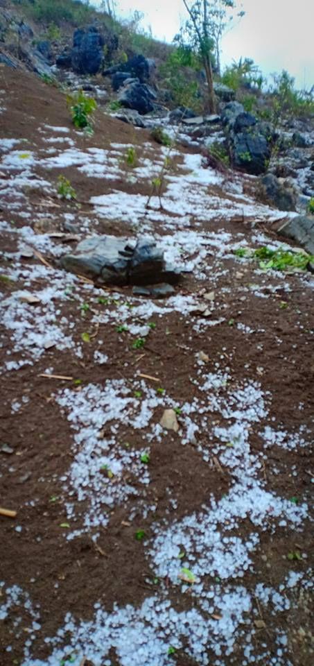 Mưa đá lớn kéo dài làm nhà dân, rau màu thiệt hại Ảnh 4