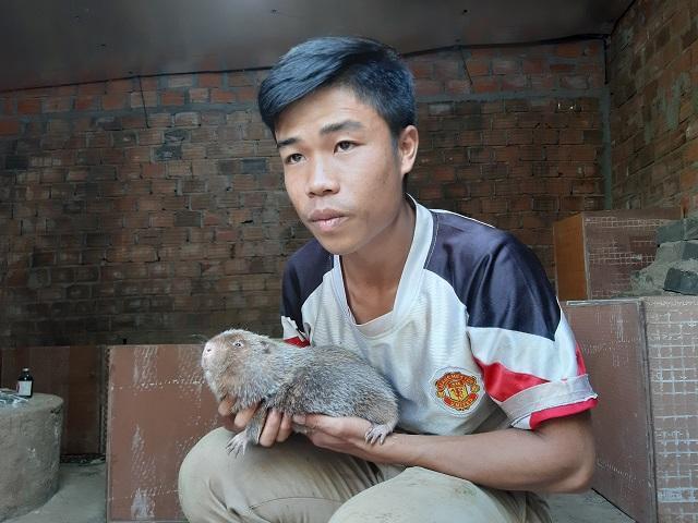 9X Gia Lai nuôi 'đàn chuột' đẻ ra tiền bạc nhưng chỉ ăn tre, mía Ảnh 4