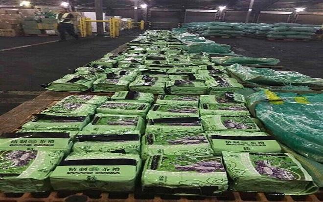 Bắt giữ thêm 276kg ma túy đá trong đường dây buôn bán ma túy xuyên quốc gia cực khủng Ảnh 1