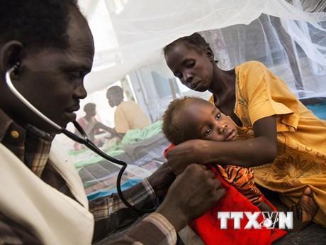 WHO kêu gọi cộng đồng thế giới nỗ lực chấm dứt bệnh lao ảnh 1