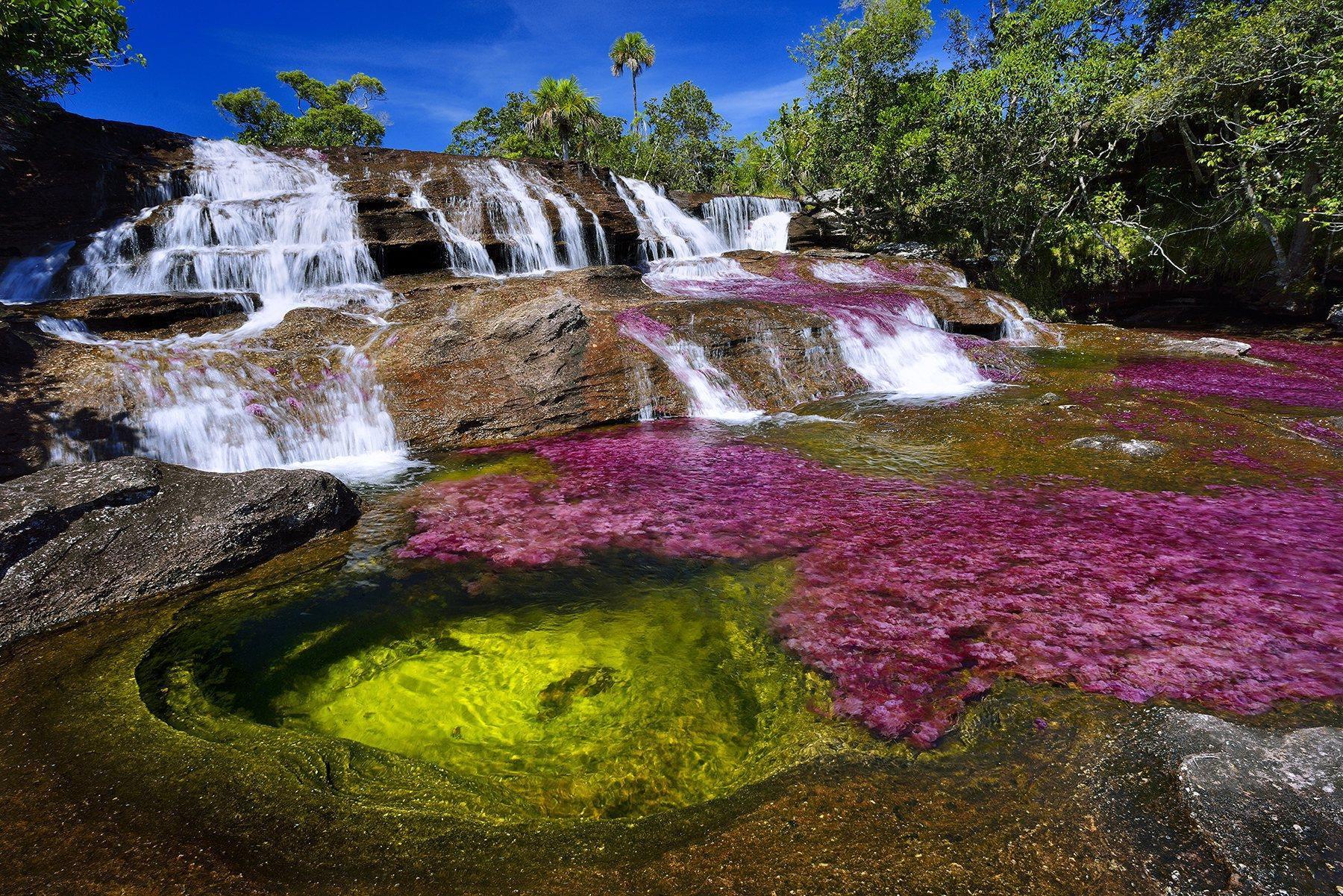 Dòng sông đẹp nhất thế giới 'chảy xuống từ thiên đường' Ảnh 2