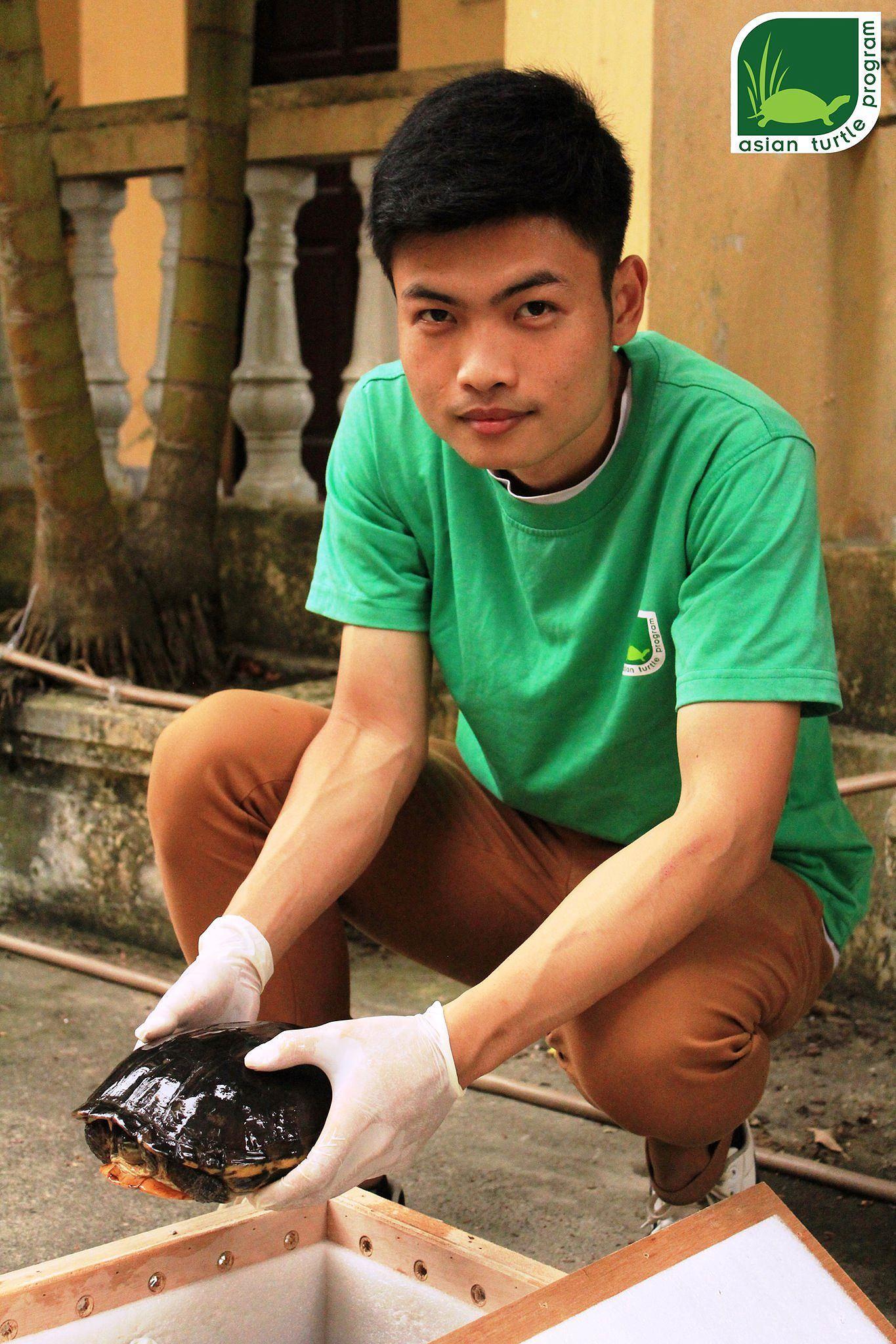 Hồng Kông bàn giao một cá thể rùa quý hiếm cho Việt Nam Ảnh 3