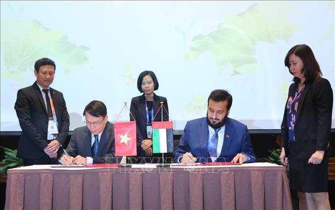 OANA 44: Tăng cường thông tin về Việt Nam và UAE đến với công chúng mỗi nước Ảnh 1