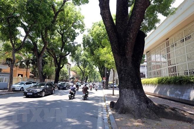 Dự báo thời tiết hôm nay: Hà Nội ngày nắng nóng, tối có mưa rào ảnh 1