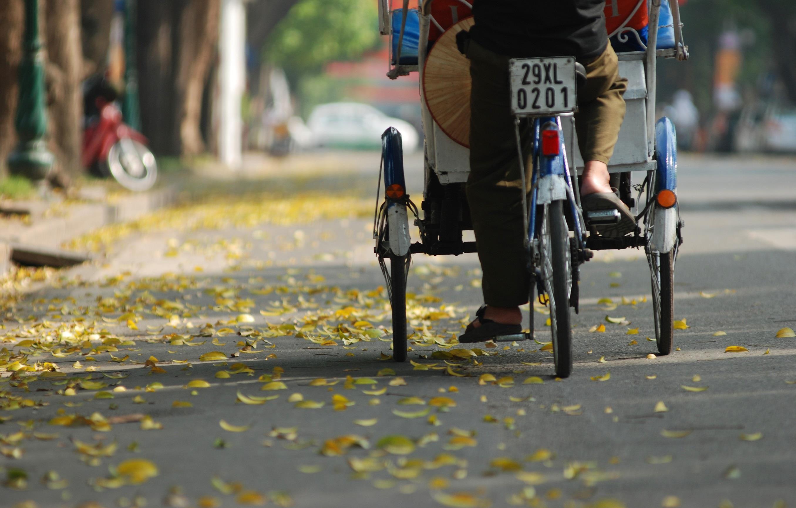 Đám đông đổ đến con đường lãng mạn nhất Hà Nội đón mùa sấu thay lá Ảnh 7