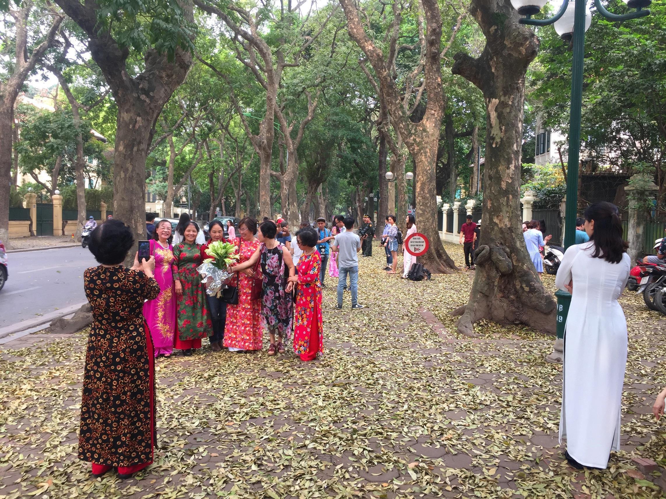 Đám đông đổ đến con đường lãng mạn nhất Hà Nội đón mùa sấu thay lá Ảnh 14