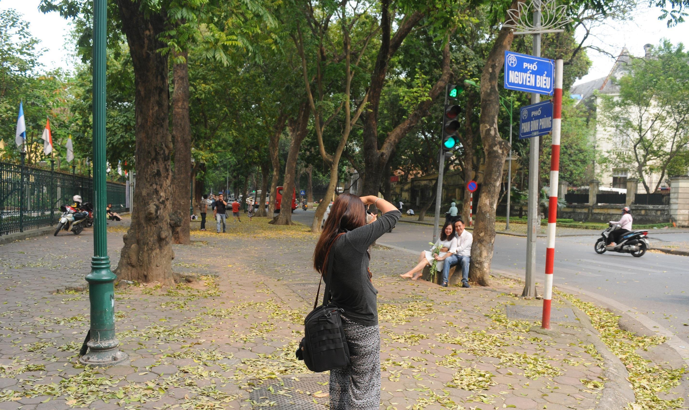 Đám đông đổ đến con đường lãng mạn nhất Hà Nội đón mùa sấu thay lá Ảnh 2