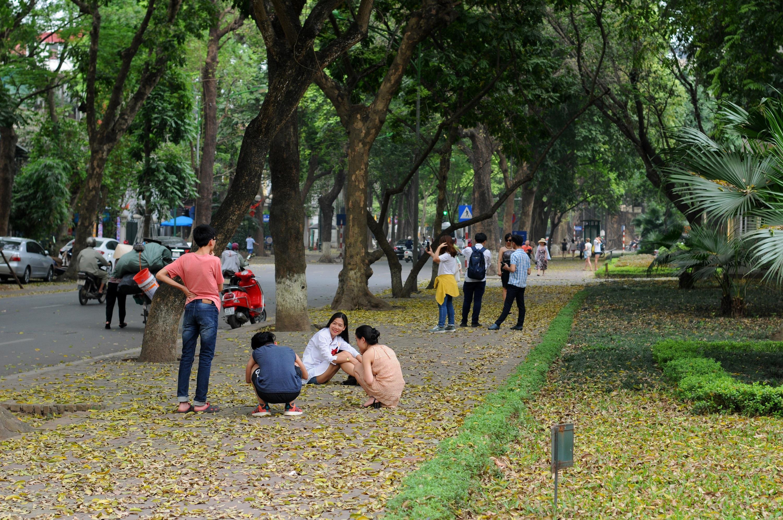 Đám đông đổ đến con đường lãng mạn nhất Hà Nội đón mùa sấu thay lá Ảnh 13