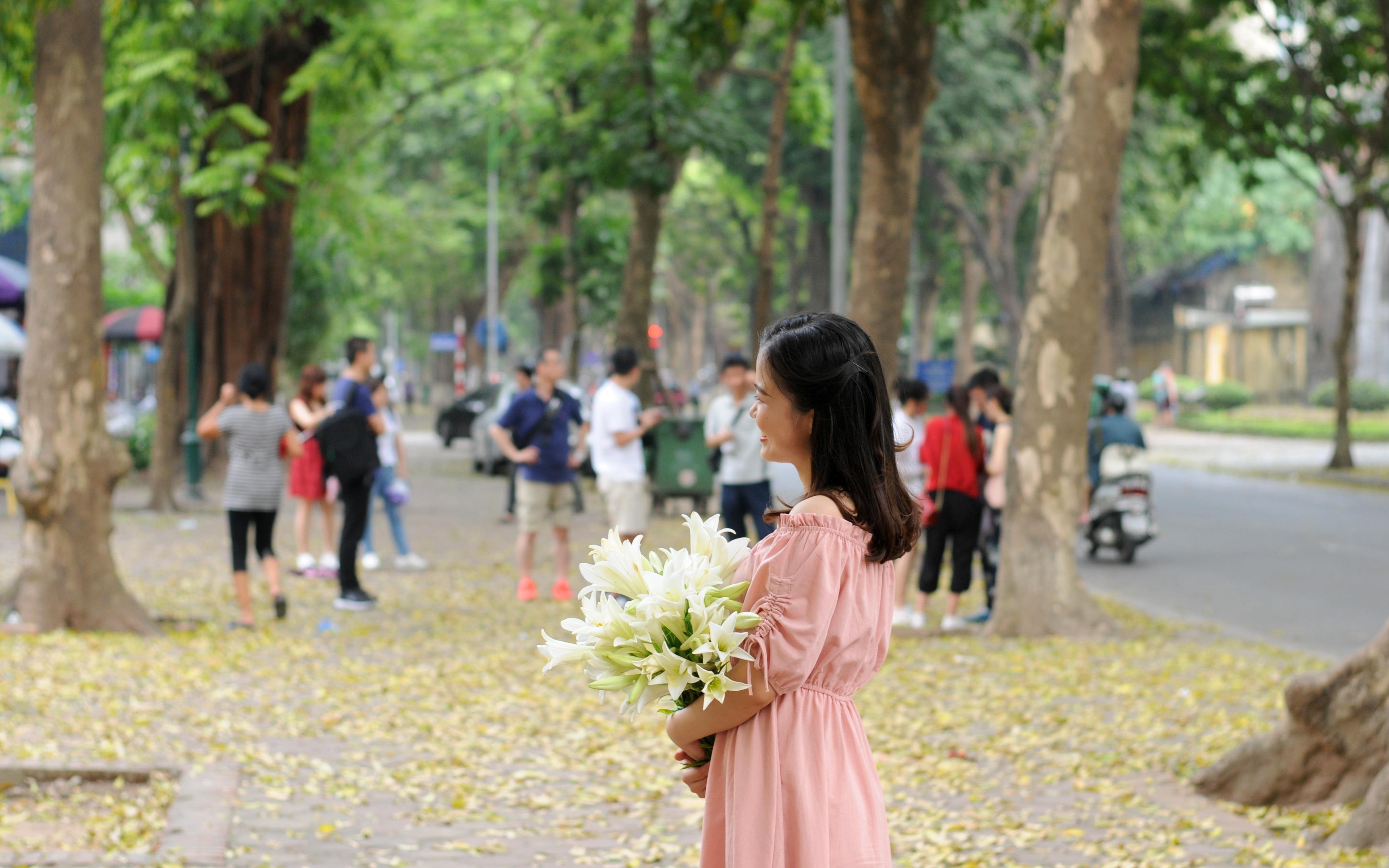 Đám đông đổ đến con đường lãng mạn nhất Hà Nội đón mùa sấu thay lá Ảnh 4