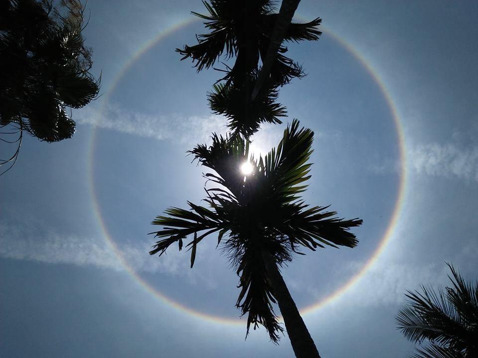 Dân Quảng Nam háo hức xem 'quầng mặt trời' Ảnh 1