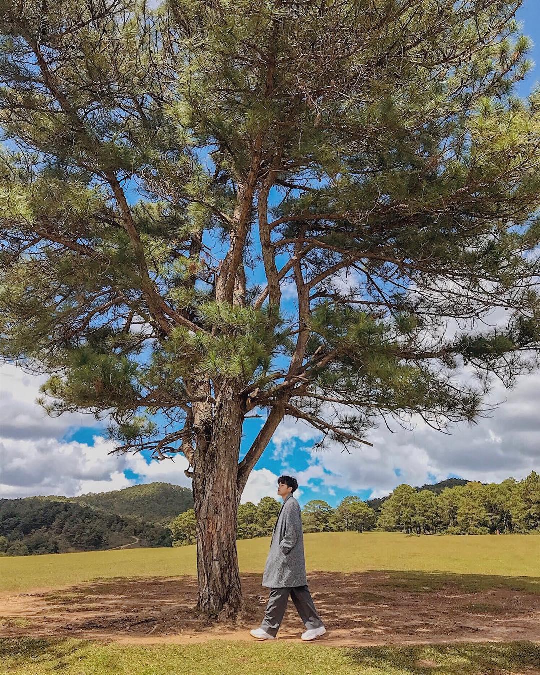 Dọc miền đất nước khám phá cảnh đẹp Ninh Bình, Huế, Đà Lạt Ảnh 13