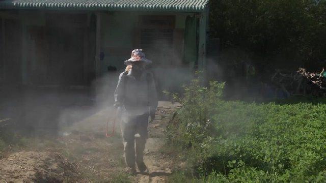 Lại phát hiện thêm một ổ dịch tả lợn châu Phi ở Quảng Nam Ảnh 1