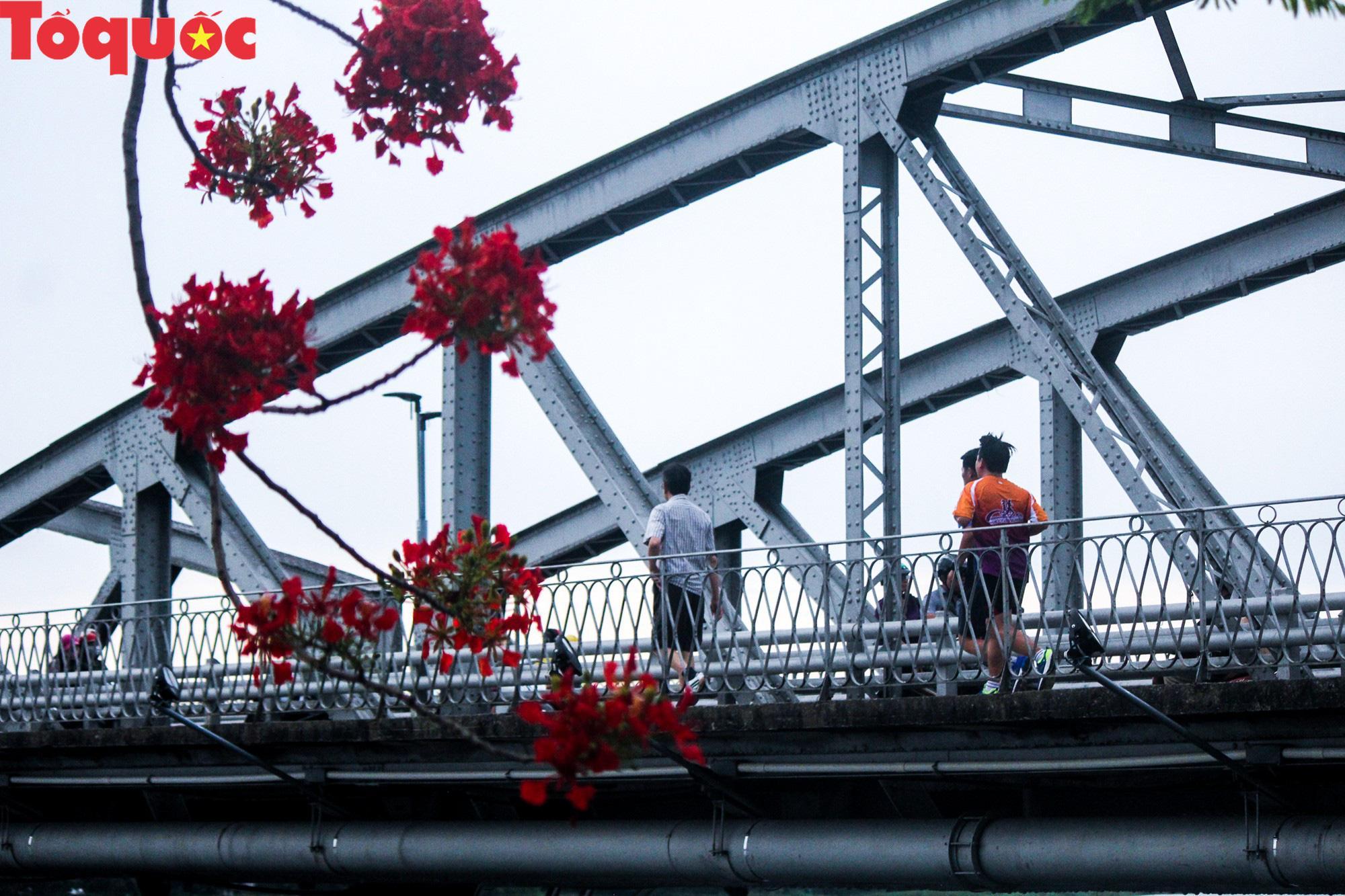 Đất trời xứ Huế đẹp rực rỡ trong mùa phượng vĩ nở hoa Ảnh 20