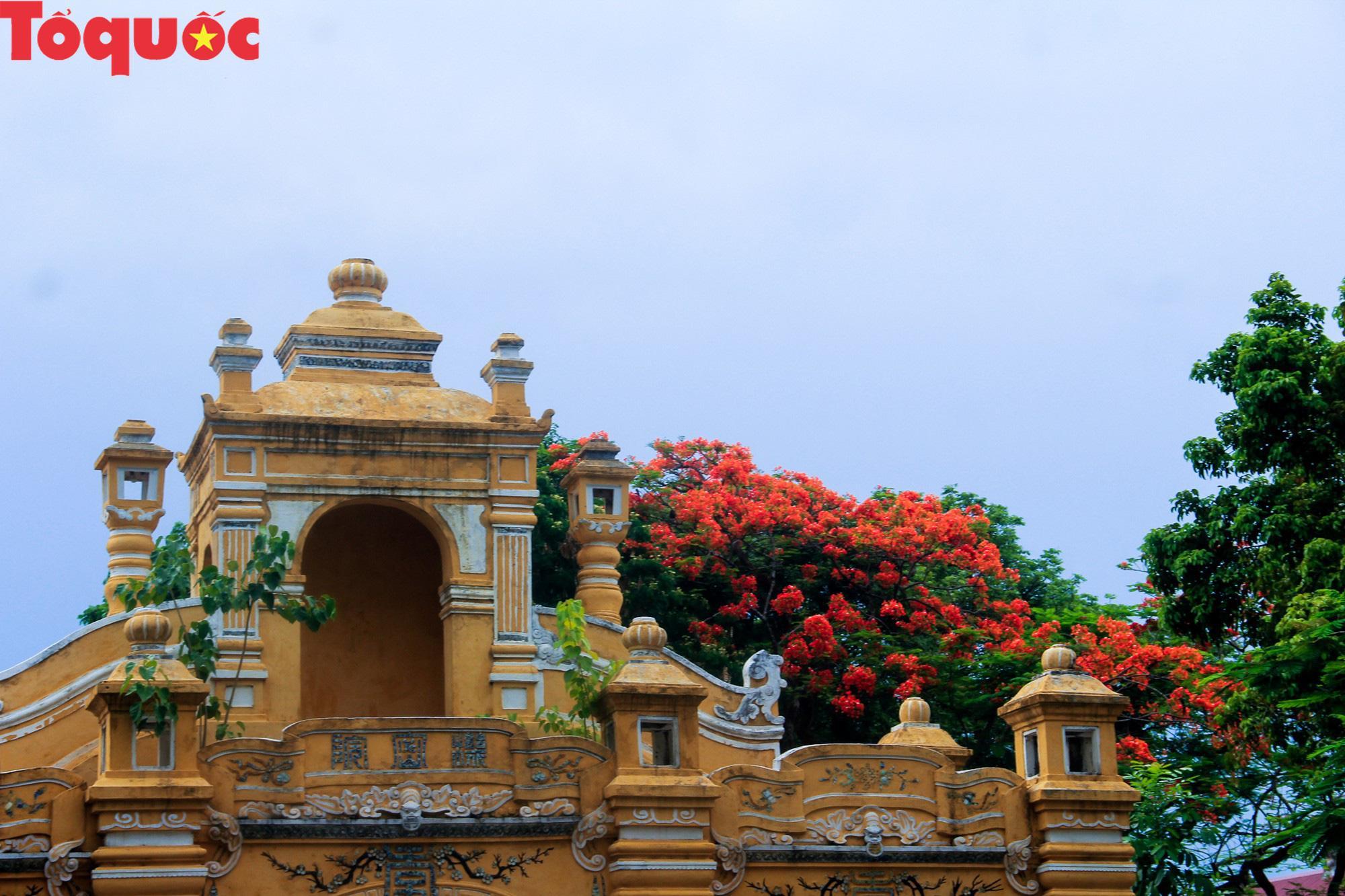 Đất trời xứ Huế đẹp rực rỡ trong mùa phượng vĩ nở hoa Ảnh 10