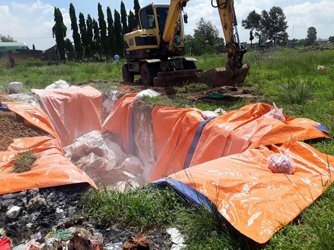 Phát hiện 4,2 tấn thịt nhiễm dịch tả lợn châu Phi ở Đồng Nai: Khởi tố vụ án Ảnh 1