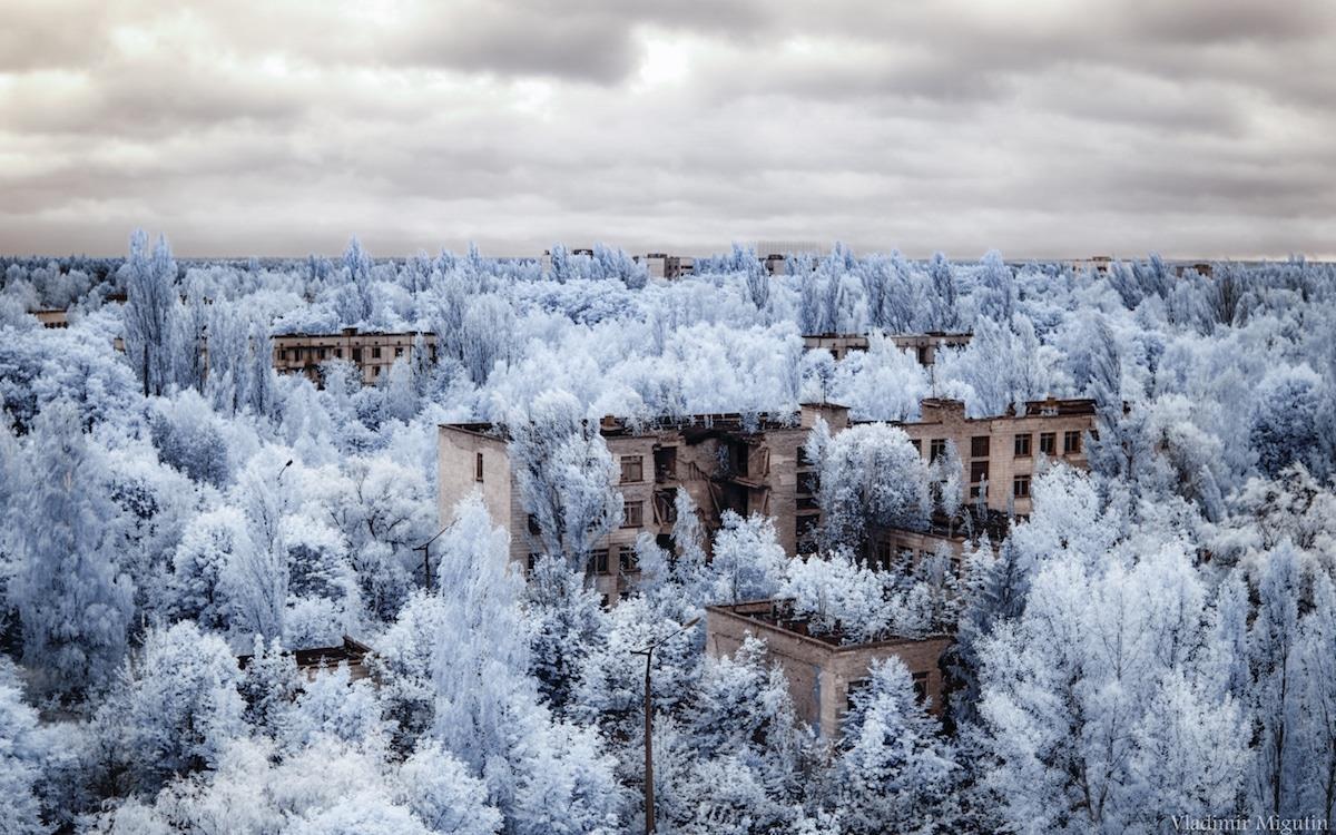 Vùng đất chết Chernobyl hóa xứ thần tiên qua ống kính nhiếp ảnh gia Ảnh 8