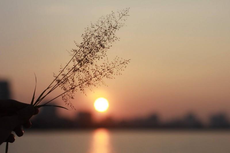 Ngày mai mặt trời lại lên Ảnh 1