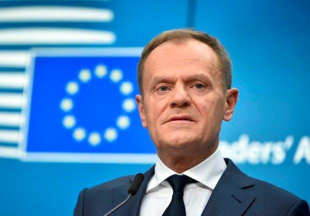 Bắt đầu đàm phán với lãnh đạo EP về chức chủ tịch Ủy ban châu Âu Ảnh 1