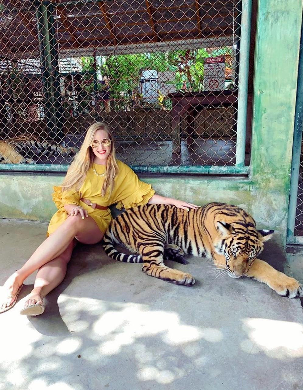 Tới Thái Lan, ghé nơi hổ đi lại nhởn nhơ trước mặt du khách Ảnh 5