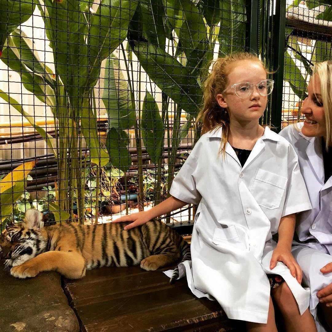 Tới Thái Lan, ghé nơi hổ đi lại nhởn nhơ trước mặt du khách Ảnh 8