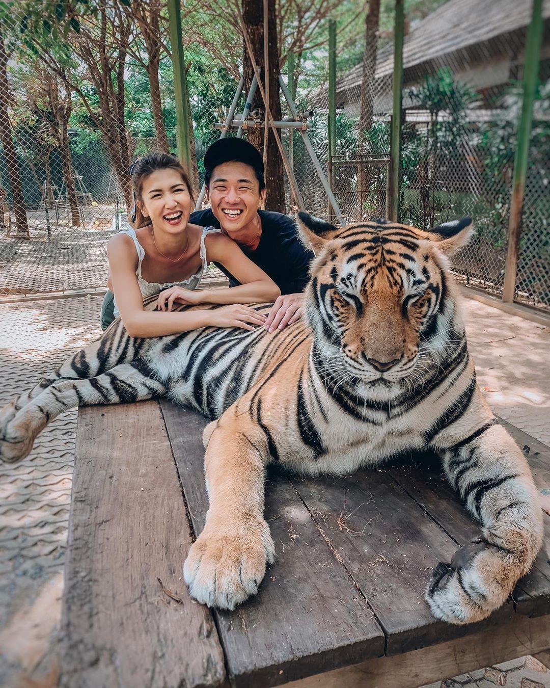 Tới Thái Lan, ghé nơi hổ đi lại nhởn nhơ trước mặt du khách Ảnh 2