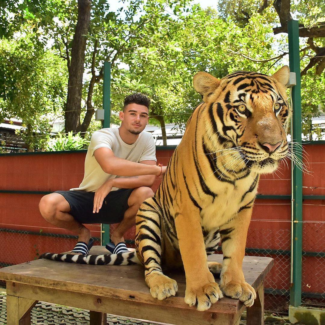 Tới Thái Lan, ghé nơi hổ đi lại nhởn nhơ trước mặt du khách Ảnh 9