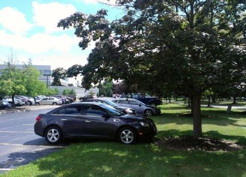 Cách bảo vệ hiệu quả cho xe dưới trời nắng nóng Ảnh 1