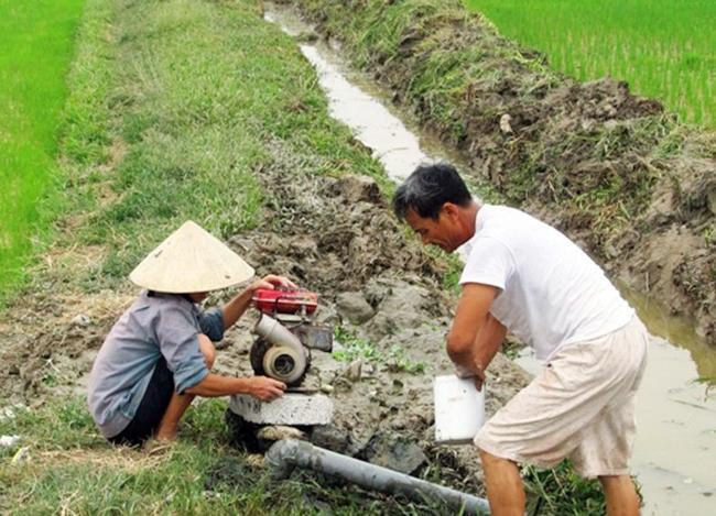 Nắng nóng, khô hạn ảnh hưởng đến các địa phương Ảnh 1