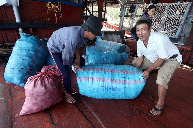 930 tấn mực khô ứ đọng vì Trung Quốc không mua Ảnh 2