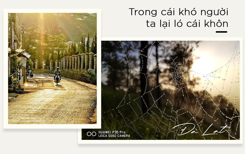 Chuyện chưa kể về những bức ảnh biết nói ở Ninh Bình, Huế, Đà Lạt Ảnh 7