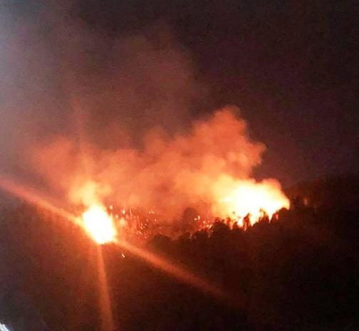 Cháy dữ dội trên núi Bà Hỏa, cả khu phố ở Quy Nhơn náo loạn Ảnh 1