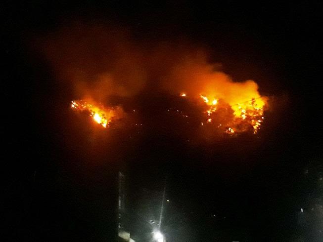 Cháy dữ dội trên núi Bà Hỏa, cả khu phố ở Quy Nhơn náo loạn Ảnh 5