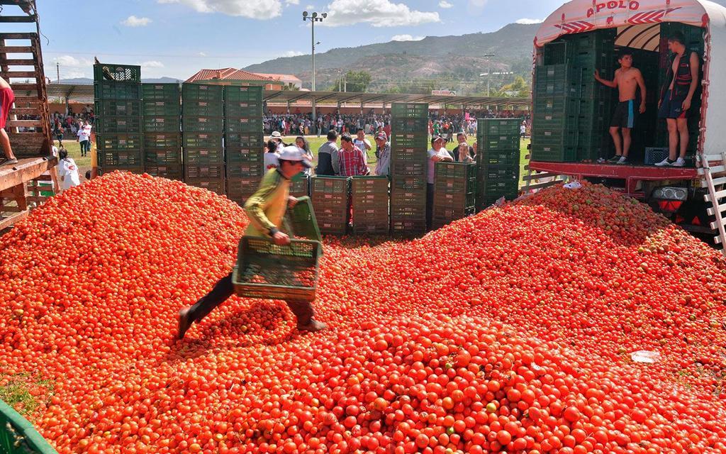 Bơi giữa 'cơn lũ' cà chua trong lễ hội độc đáo ở Tây Ban Nha Ảnh 2