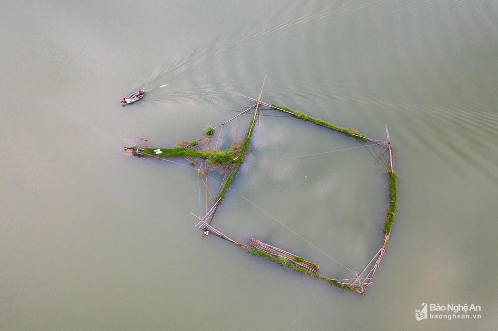 Đánh cá đêm giữa lòng hồ Vực Mấu Ảnh 6