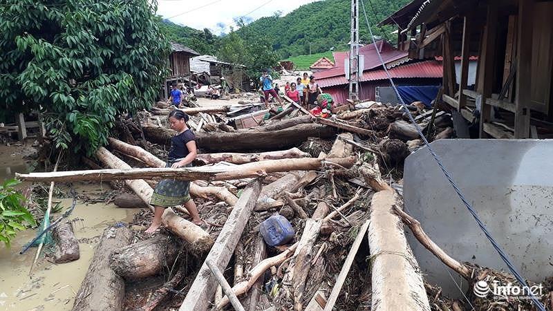 Thanh Hóa: Sau lũ dữ, bản Sa Ná lại ngập trong... gỗ Ảnh 12