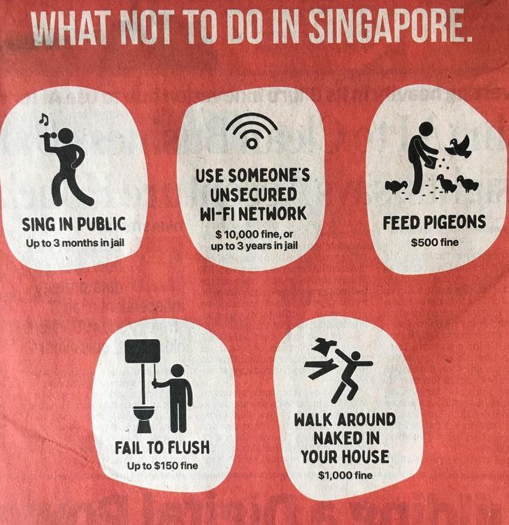 Những điều đặc biệt chỉ có ở đất nước Singapore Ảnh 3