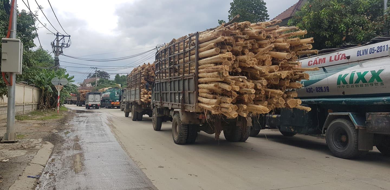 Người dân Đà Nẵng suốt ngày chặn 'xe bẩn' Ảnh 1