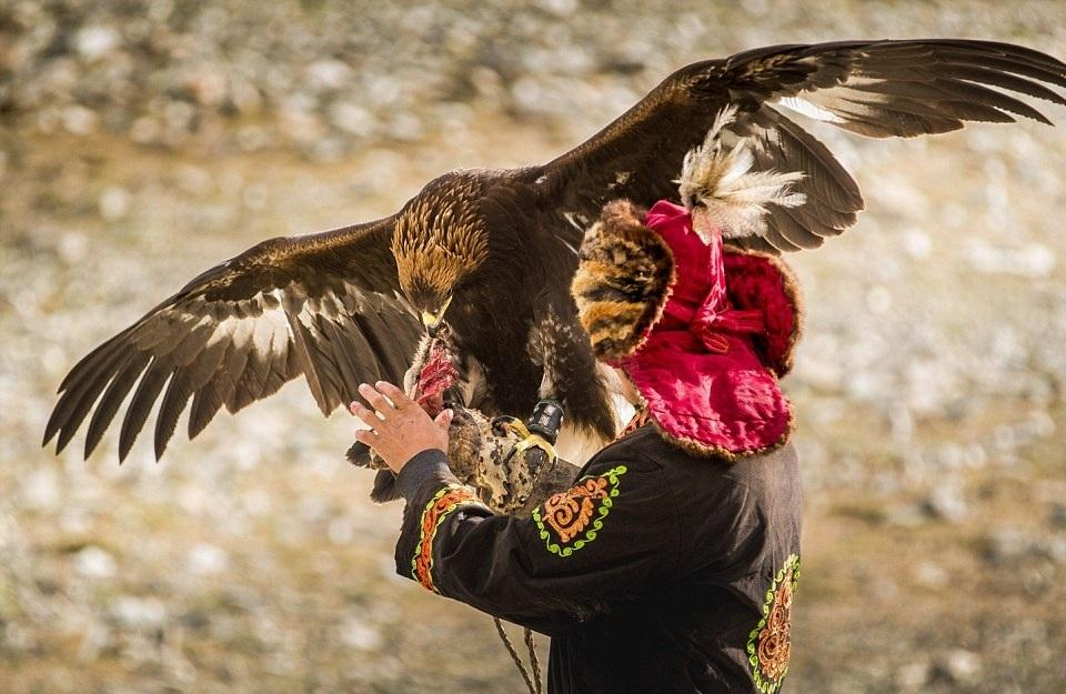 Cuộc sống của những người thợ săn bằng đại bàng ở miền Tây Mông Cổ (Phần I) Ảnh 5