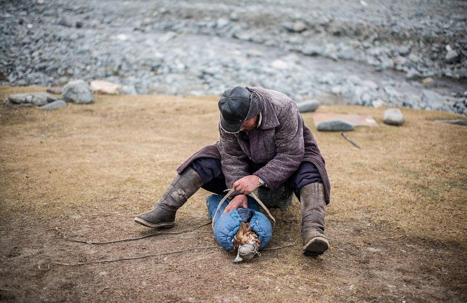 Cuộc sống của những người thợ săn bằng đại bàng ở miền Tây Mông Cổ (Phần I) Ảnh 6